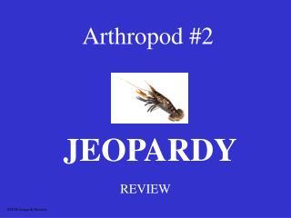 Arthropod 2