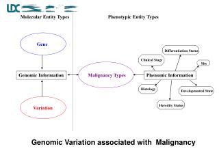 Malignancy Types