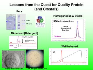 Lessons from the Quest for Quality Protein (and Crystals)