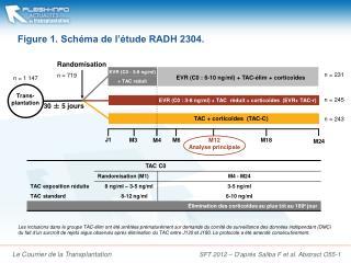 Figure 1. Schéma de l'étude RADH 2304.