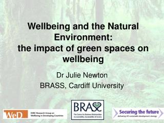 Wellbeing and the Natural Environment:  the impact of green spaces on wellbeing