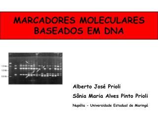 MARCADORES MOLECULARES BASEADOS EM DNA