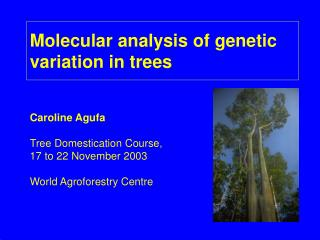 Molecular analysis of genetic variation in trees