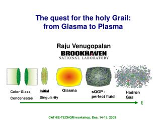 The quest for the holy Grail:  from Glasma to Plasma