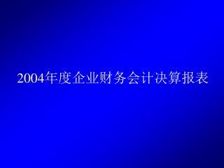 2004 年度企业财务会计决算报表