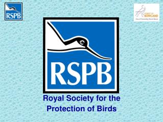 Royal Society for the Protection of Birds