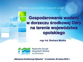 Gospodarowanie wodami w dorzeczu środkowej Odry na terenie województwa opolskiego