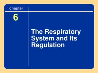 The Respiratory System and Its Regulation