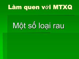 Làm quen với MTXQ
