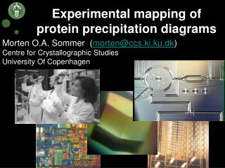 Experimental mapping of protein precipitation diagrams