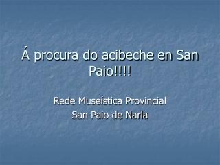 � procura do acibeche en San Paio!!!!