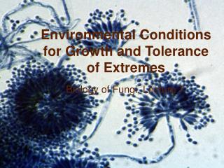 Environmental Conditions for Growth and Tolerance of Extremes
