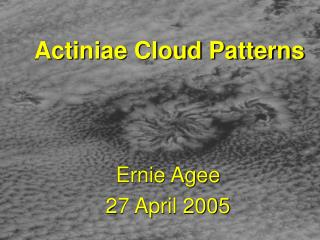 Actiniae Cloud Patterns