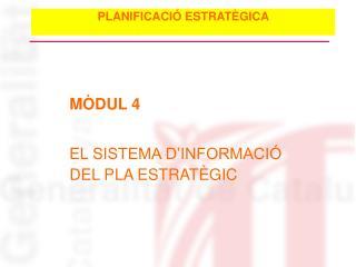 MÒDUL 4 EL SISTEMA D'INFORMACIÓ DEL PLA ESTRATÈGIC