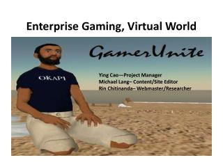 Enterprise Gaming, Virtual World