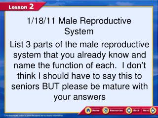 1/18/11 Male Reproductive System
