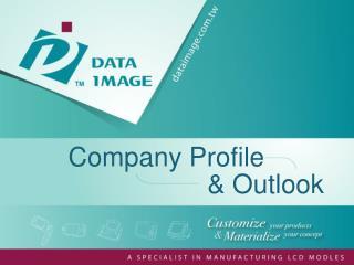 Company Profile   & Outlook