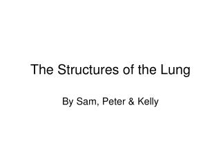 The Structures of the Lung