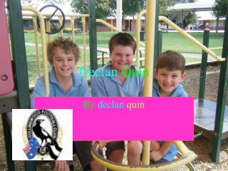 Declan  Quin