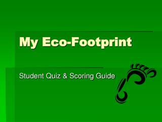 My Eco-Footprint