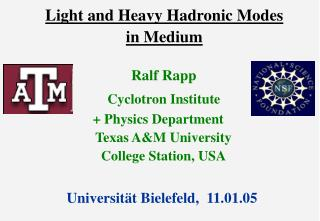 Light and Heavy Hadronic Modes  in Medium