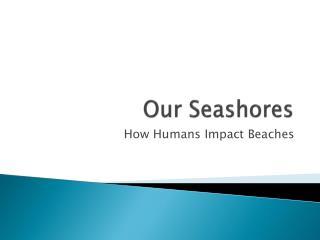 Our Seashores