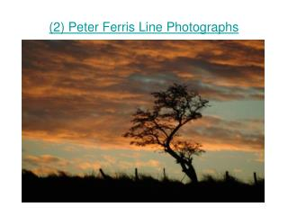 (2) Peter Ferris Line Photographs