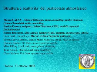 Struttura e reattivita' del particolato atmosferico