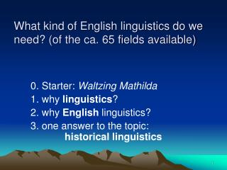 What kind of English linguistics do we need? (of the ca. 65 fields available)