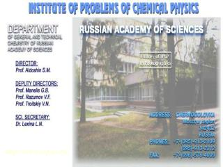 icp.ac.ru/