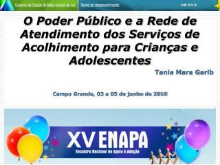 O Poder Público e a Rede de Atendimento dos Serviços de Acolhimento para Crianças e Adolescentes
