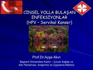 CINSEL YOLLA BULASAN ENFEKSIYONLAR HPV   Servikal Kanser