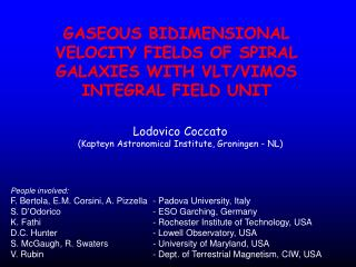 GASEOUS BIDIMENSIONAL VELOCITY FIELDS OF SPIRAL GALAXIES WITH VLT/VIMOS INTEGRAL FIELD UNIT