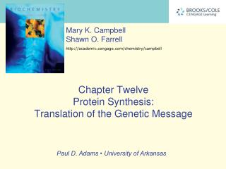 Chapter Twelve Protein Synthesis:  Translation of the Genetic Message