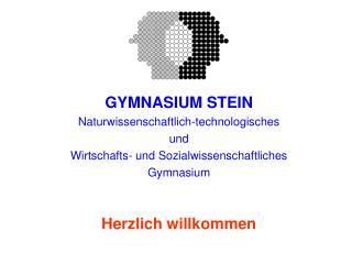 GYMNASIUM STEIN Naturwissenschaftlich-technologisches und