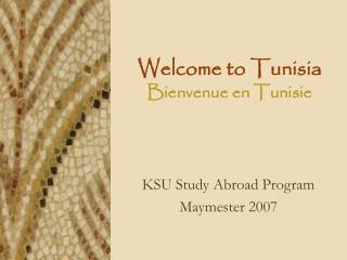 Welcome to Tunisia Bienvenue en Tunisie
