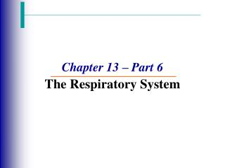 Chapter 13 – Part 6 The Respiratory System