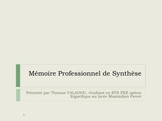 Mémoire Professionnel de Synthèse