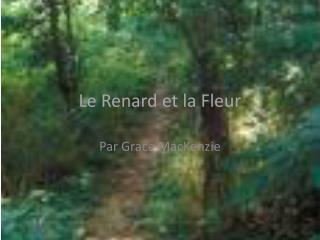 Le  Renard  et la Fleur