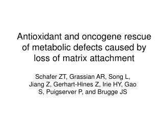 Antioxidant and oncogene rescue of metabolic defects caused by loss of matrix attachment