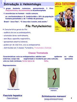 Introdu��o � Helmintologia