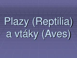 Plazy (Reptilia) a vt�ky (Aves)