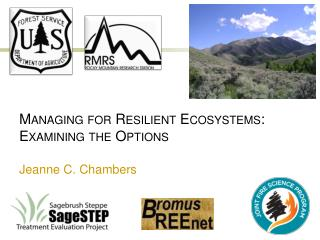 Managing for Resilient Ecosystems: Examining the Options Jeanne C. Chambers