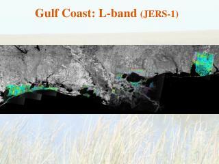 Gulf Coast: L-band  (JERS-1)