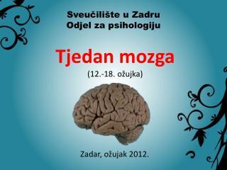 Tjedan mozga (12.-18. ožujka)