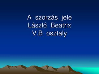 A  szorz �s  jele L�szl�  Beatrix V.B  osztaly