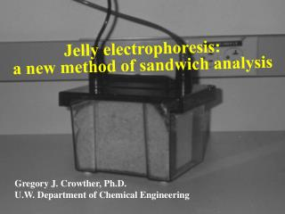 Jelly electrophoresis: a new method of sandwich analysis