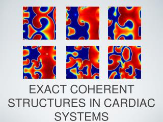 EXACT COHERENT STRUCTURES IN CARDIAC SYSTEMS