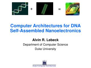 Computer Architectures for DNA Self-Assembled Nanoelectronics