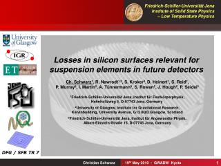 Losses in silicon surfaces relevant for  suspension elements in future detectors